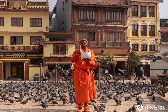 在广场内的僧人与鸽子