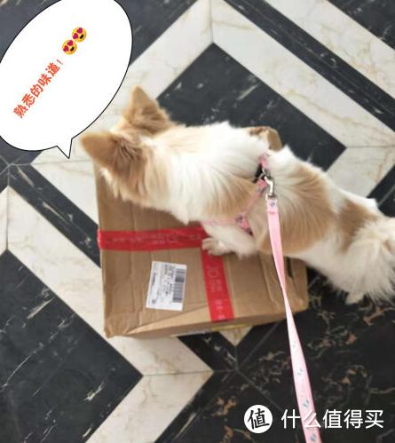 国内唯一取得中国科学院认证的天然犬粮,性价比还超高!你信不信?