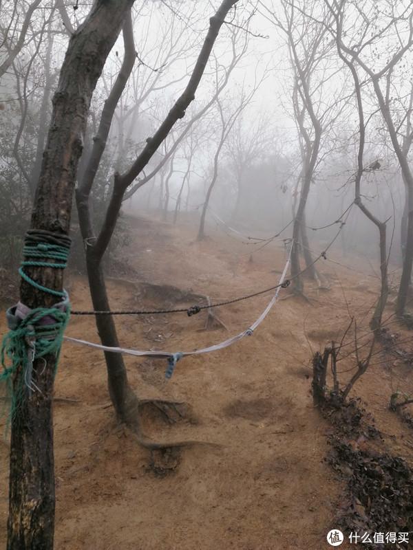 我就知道一团团迷雾出来之后看到了这个鬼东西。。。