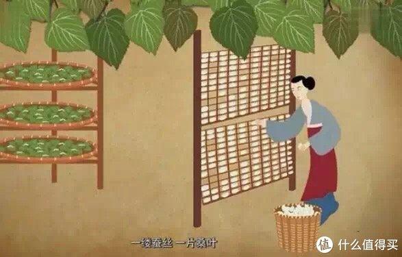 """来之""""丝绸之府、鱼米之乡、百花地面""""之称的江南水乡桐乡的我,告诉你:蚕丝被真的来之不易!"""