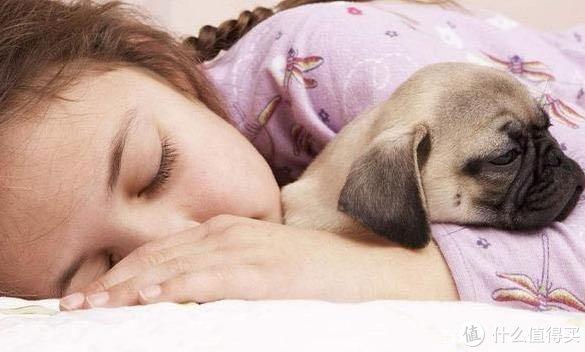 你知道哪些可以延长狗狗寿命的方法呢?