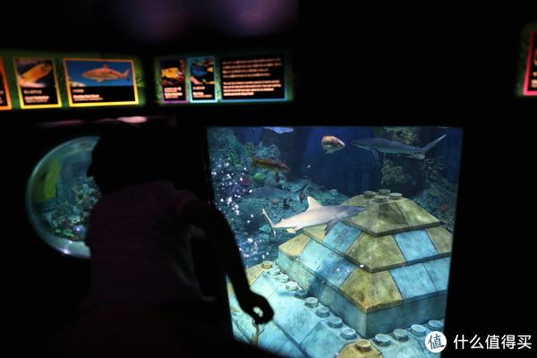 有鲨鱼守卫的海底金字塔