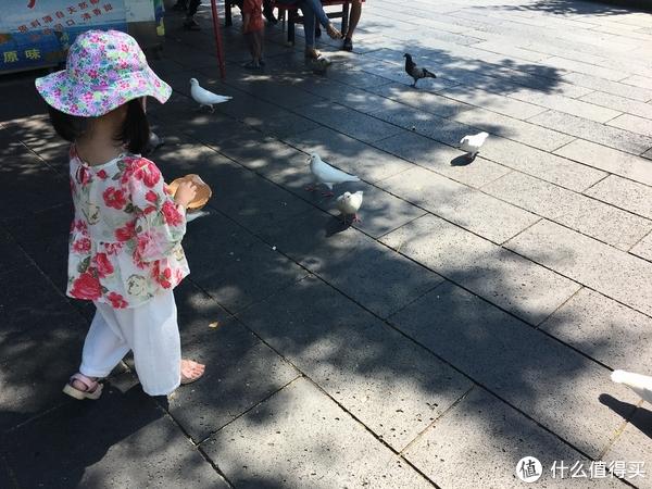 南山寺啥景点都没看,就喂了下鸽子