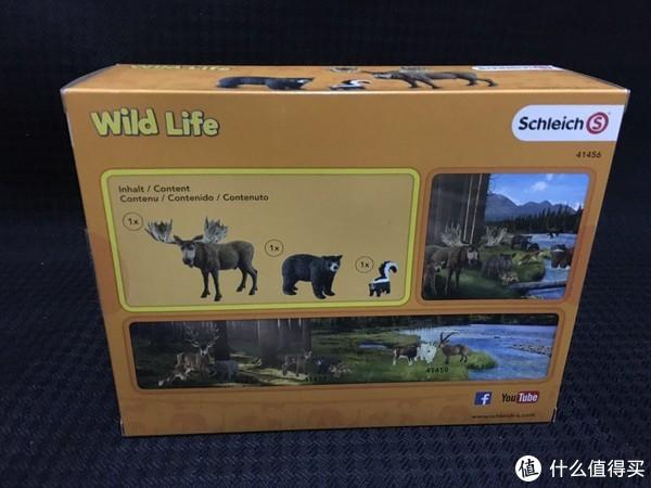 背面,还有在草地上的图片,有种动物世界的既视感。