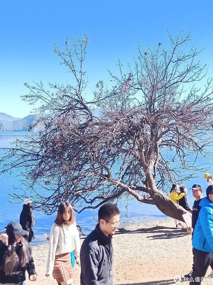 昆明-丽江-泸沽湖-大理一线游简单攻略(二)