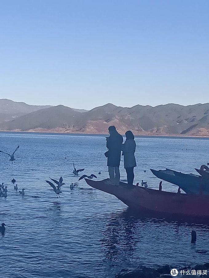 大落水码头喂海鸥的情侣
