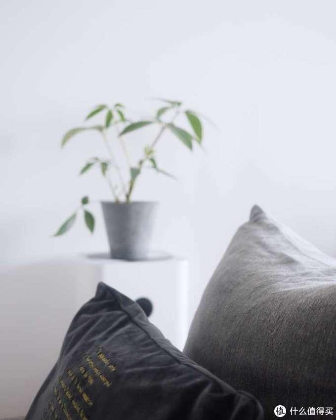 中灰色沙发套是原配的,纹理粗犷,用于秋冬季