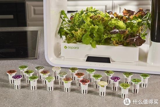 潮酷家电:胶囊种菜机来了,农业小白可在厨房种蔬菜
