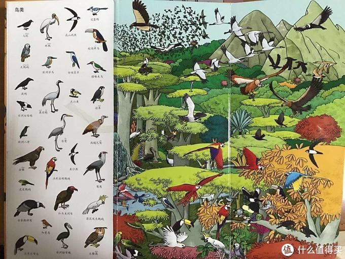 长长的小百科——恐龙