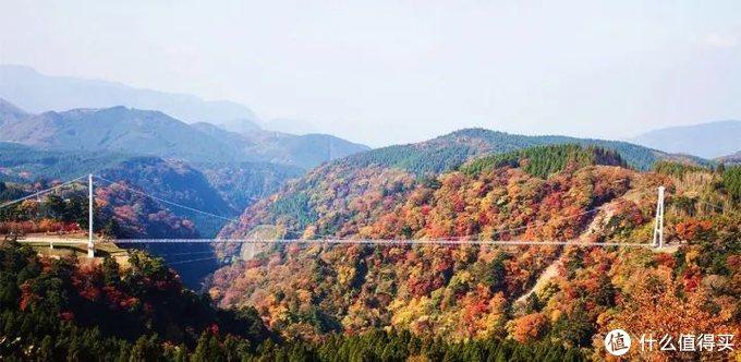 还在犹豫去日本哪里浪?九州人少樱美汤正还有特价