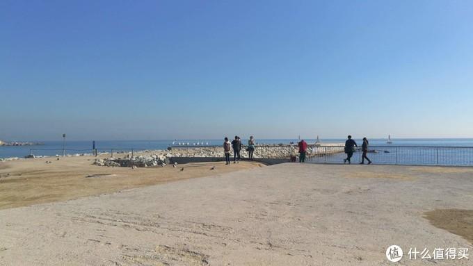 礁石和站在栏杆上的海鸥