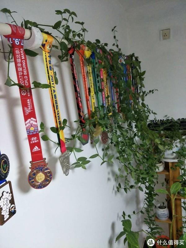 朋友家的奖牌架