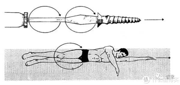 游泳篇—如何提高长距离自由泳水平