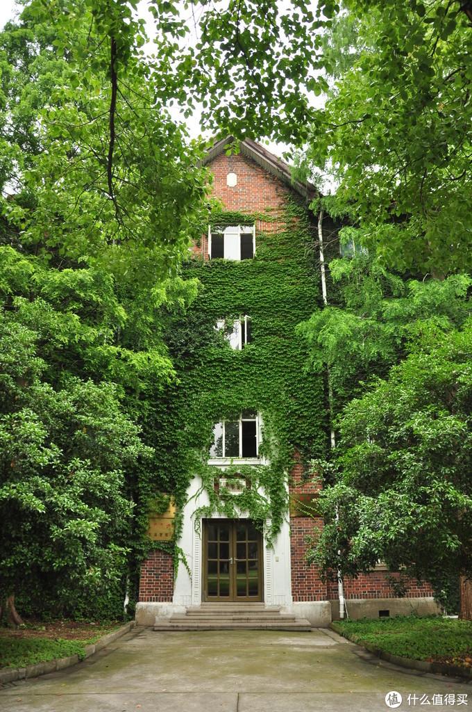 东吴智库之地,虽然现名苏州大学,但东吴之名,却到处都是,爬山虎快爬满了房子,格外的绿和舒服