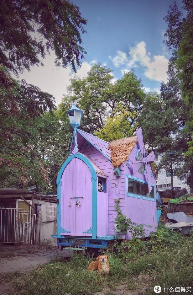 这个小木屋太可爱了