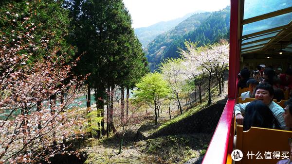 保津川的山水景色