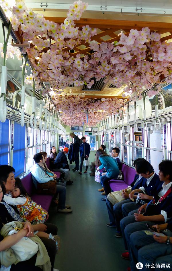 岚电的车厢顶部全部是樱花