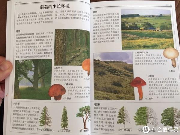 吃货的博物书籍介绍:路边的蘑菇你不要采
