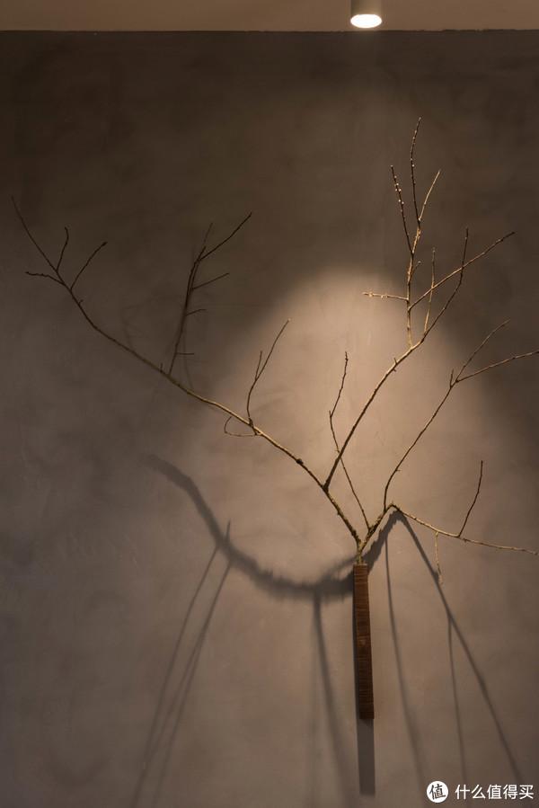 水泥+枯枝