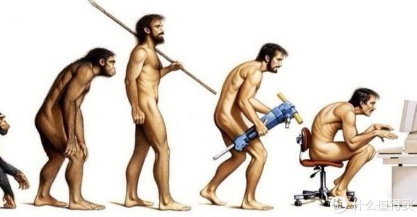 人类姿势的进化