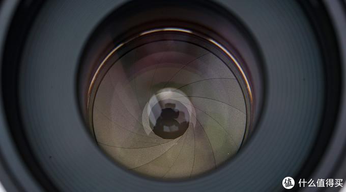 原厂头的半价,两倍的细节----你选哪个?半深度评测老蛙100mmF2.8微距镜头