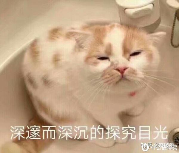 【值日声】椰汁滋润你我他,波涛汹涌中暗藏玄机!