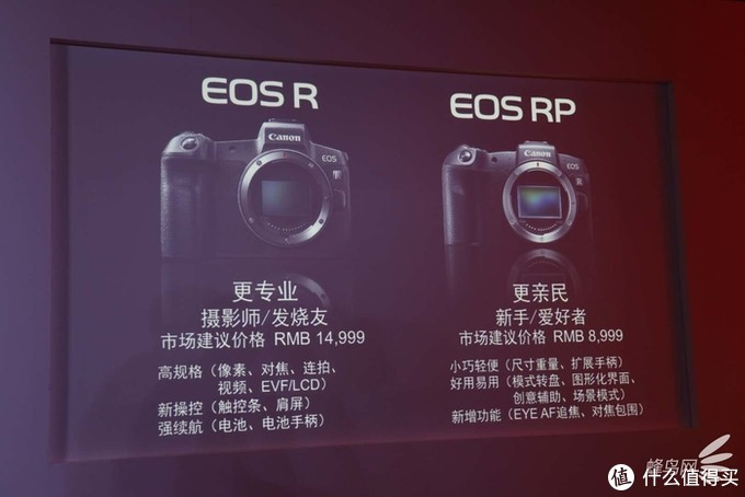 EOS R与EOS RP定位对比