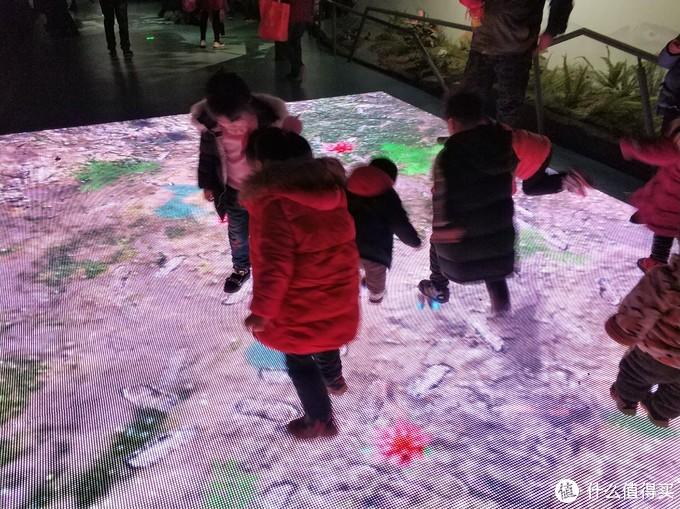图书馆猿の武汉自然博物馆半日游