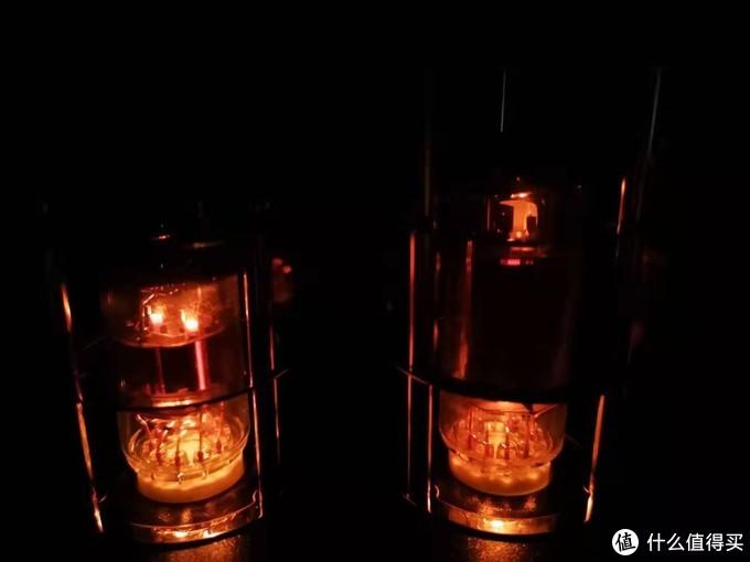 黑暗中的MS-10DMKII-胆管