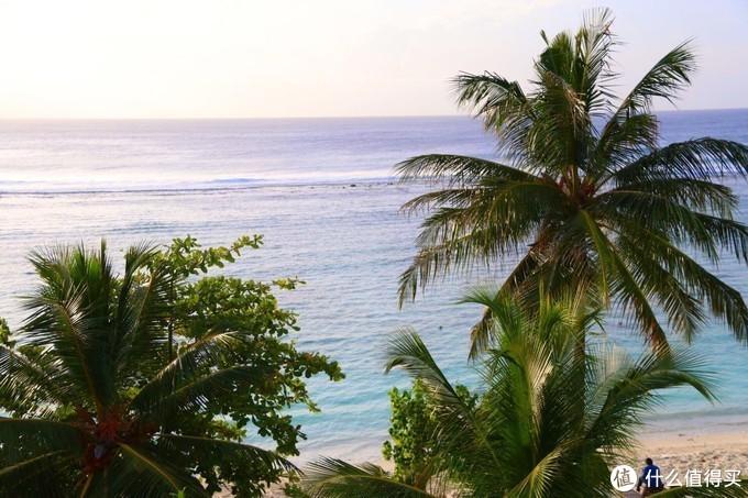 ▲岛上小伙伴分享—马累美丽的清晨,朝阳海滩下的奔跑,美不胜收!