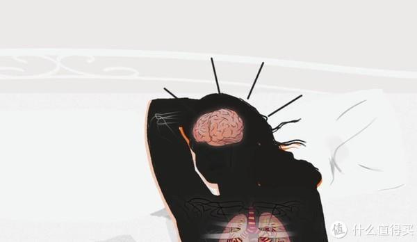 真人版《楚门的世界》,人体24小时是如何运作的?