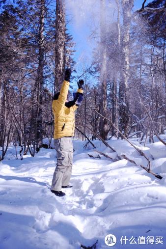 这里的雪是松松的捏不起来的,随手一撒就很美