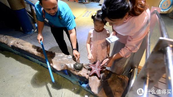 工作人员捞出海星、鱼给闺女触摸