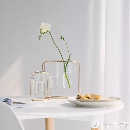 如何选花瓶?是偶像派,更是实力派