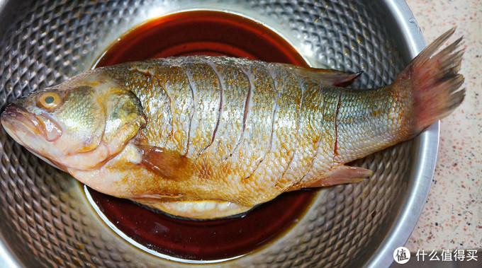看!这条鱼在发光!如何做出一条完美清蒸鱼?