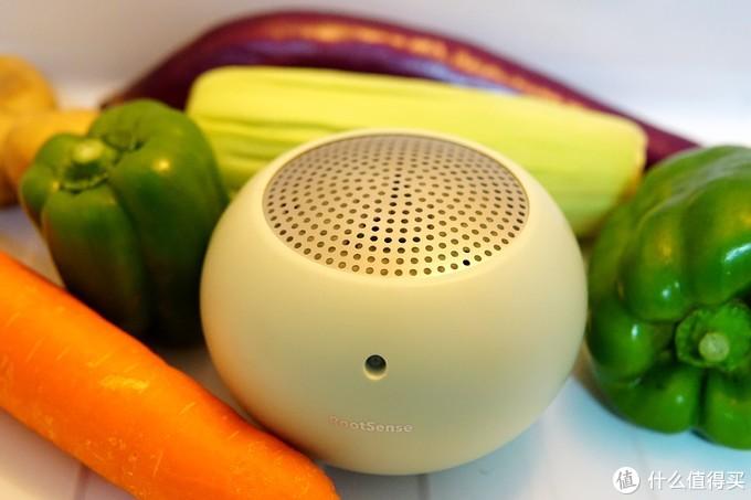 冰箱除异味,还能杀菌保鲜?这款舌尖卫士值得了解一下