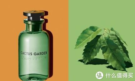 """Louis Vuitton4月将推出 中性香水系列 """"Les Colognes"""""""