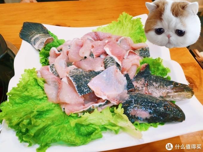 小鱼鱼,很不错吧