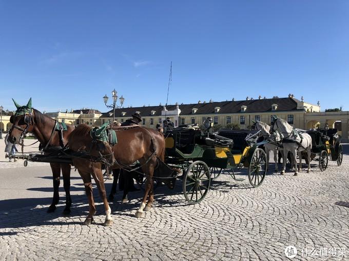 美泉宫的马车