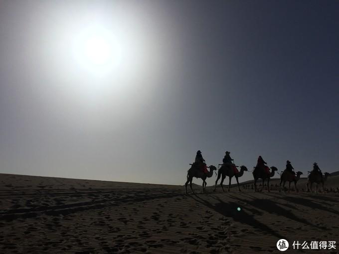 迟到的青甘大环线-忆2017暑期旅行