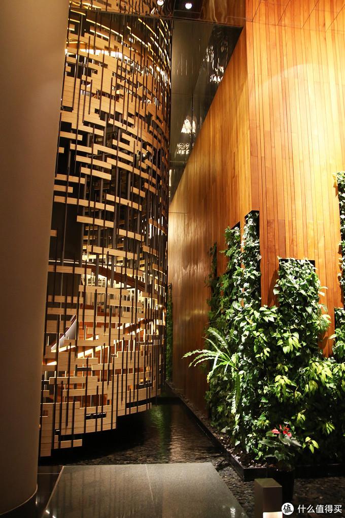 大堂的墙面绿化