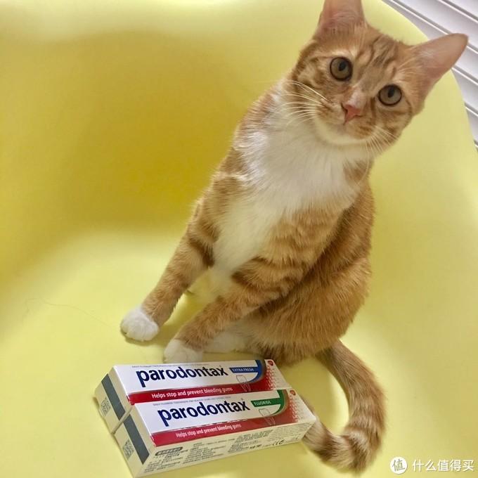 一个成功战胜牙周炎妹纸的评测——益周适parodontax专业牙龈护理牙膏