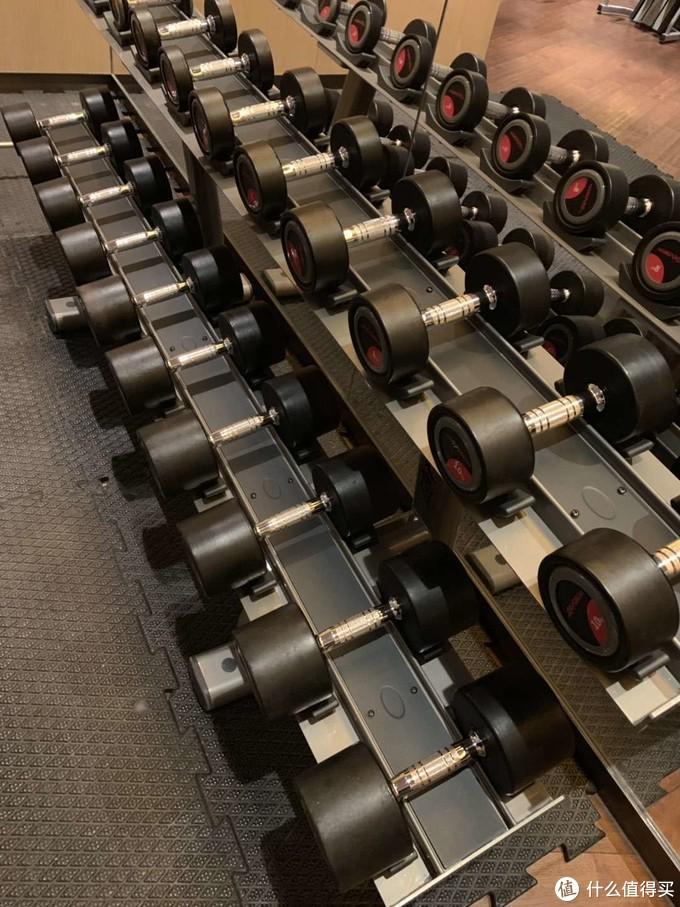 3年增肌26磅  健身达人的撸铁日常