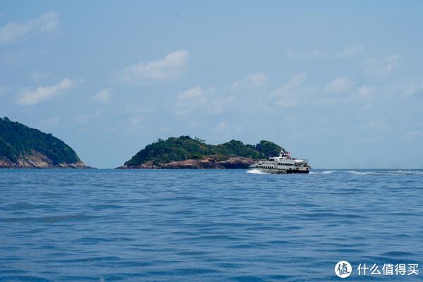 又新来一船上岛的游客~