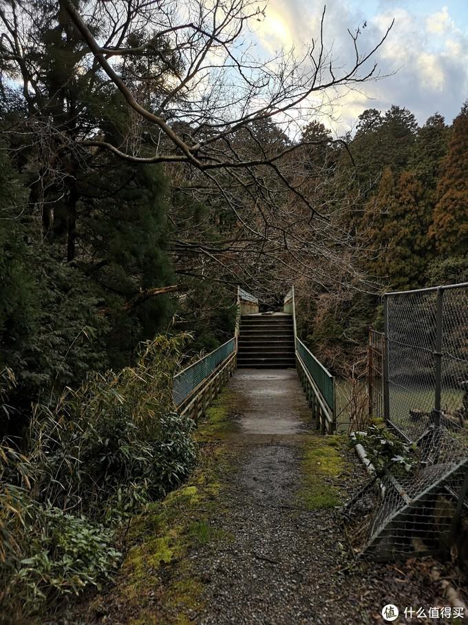 去日本旅行之前你需要了解的事——万字长文日本旅游一站指北