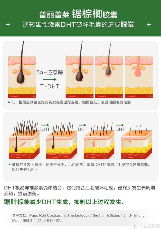 图片引自品牌天猫海外旗舰店商城,介绍了DHT作用效果,和锯棕榈减少DHT生成的文献依据