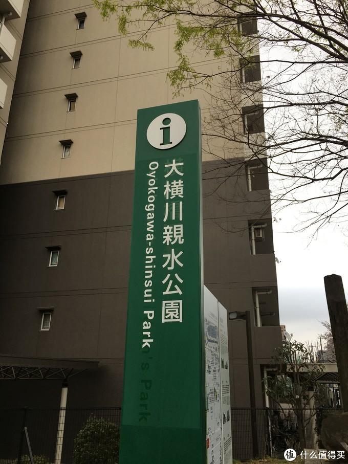 博物馆旁的公园