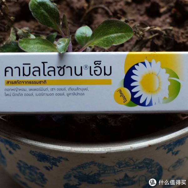 唇齿到肺腑的清凉--泰国Kamillosan洋甘菊口腔喷雾晒单