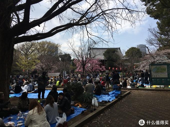 上野公园的位于东京市内,日本人都爱铺个垫子席地而坐吃吃便当喝喝酒吹个小牛一坐就是一下午