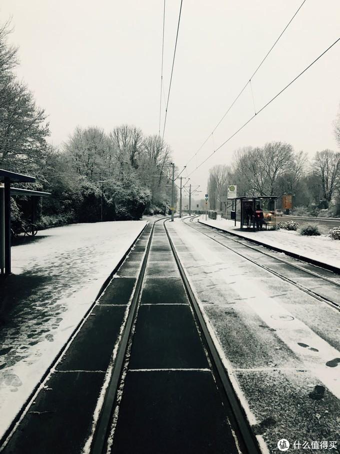 纪念下我来德国的冬天 美丽的雪景